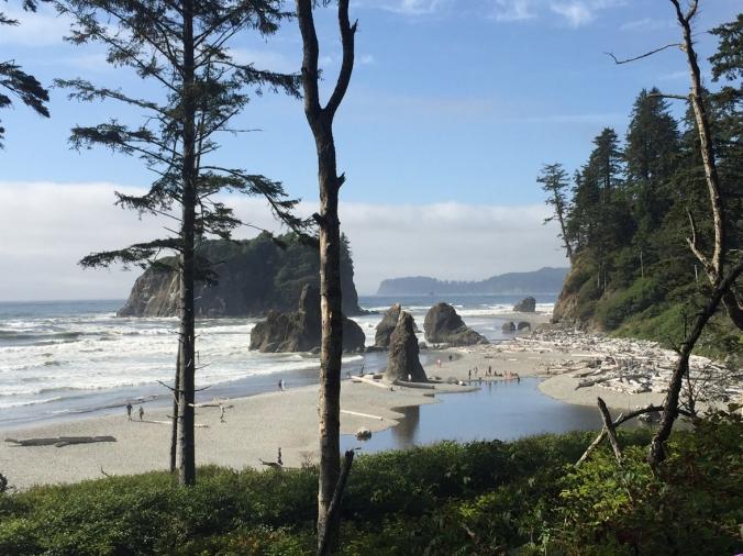Ruby Beach 5.JPG