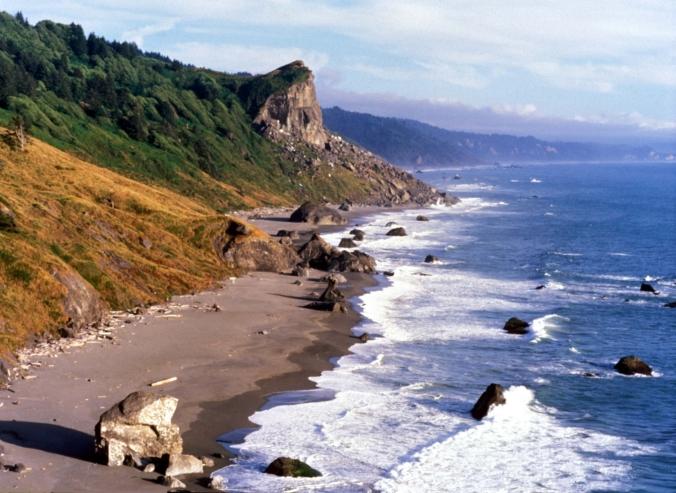 Redwoods coast better